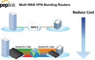Peplink – Finally A Real Alternative to MPLS & Leased lines