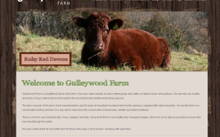 Gulleywood Website Development