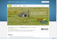 Birds V Bovis – Responsive Website Design
