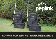 Portable SD-WAN Over Private Networks